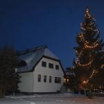 14,50m Weihnachtsbaum im Waldhof